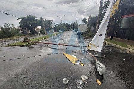Estragos por la lluvia en Mérida: caen árboles y postes