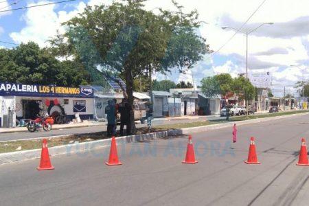 Bloquean calles en la colonia María Luisa: no tienen luz