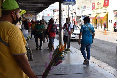 Yucatán se mantiene con 294 pacientes de Covid-19 en hospitales públicos