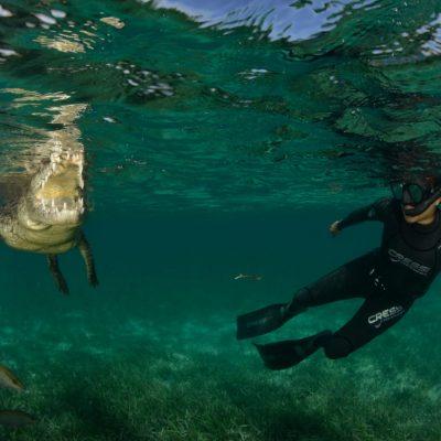 Buceo libre en cenotes, oportunidad para el turismo deportivo