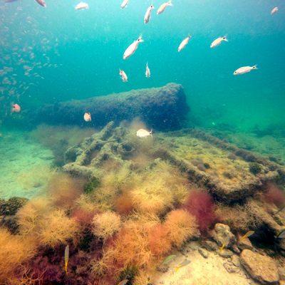 Hallan 'La Unión', barco que traficó esclavos mayas