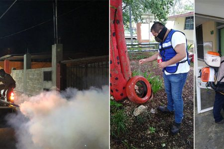 Refuerza SSY estrategia de combate a enfermedades trasmitidas por mosquitos