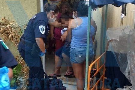 La atacan dos perros pitbull en Ciudad Caucel