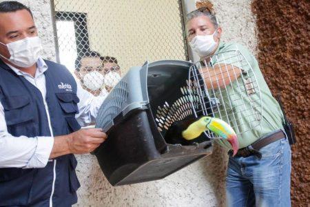 Cumple 110 años el parque zoológico del Centenario en Mérida