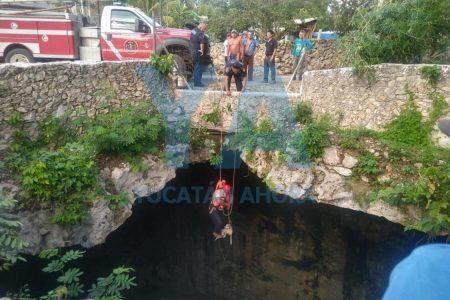 Perro pasa 22 horas atrapado en profundo cenote del oriente de Yucatán