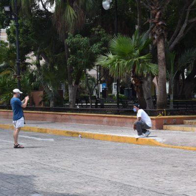 Foráneos tendrán que vivir dos años en Yucatán para ser considerados ciudadanos yucatecos