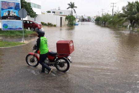 Zeta dejaría 12 horas de vientos de tormenta tropical en Mérida