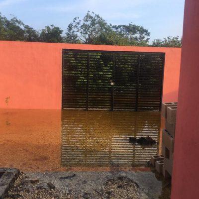 Lleva tres días atrapada en su casa de Komchén por la inundación del huracán Delta