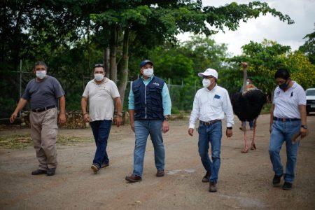 Animales del zoológico Animaya, bien protegidos durante eventos ciclónicos