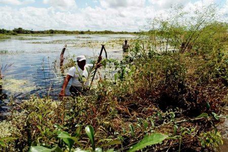 Ponte xux: ya arrancó el censo para productores del campo afectados por Gamma y Delta