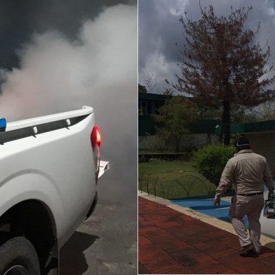 Ya son dos los yucatecos muertos por dengue en esta temporada
