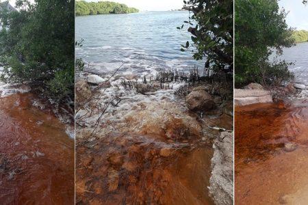 Impresionante fenómeno en Sisal: como río desembocan al mar millones de litros de agua