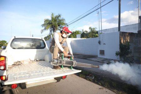 Pese a las lluvias, el dengue sigue bajo control en Yucatán
