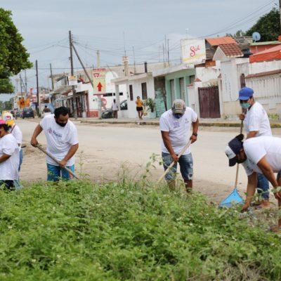 Zeta deja empleo temporal a siete mil personas en 42 municipios