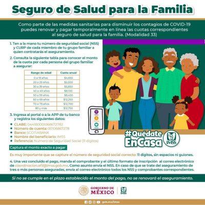 Puedes pagar en línea tu aseguramiento voluntario al IMSS en Yucatán