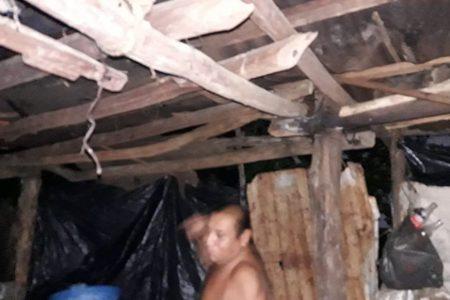 Sucilá amanece sin luz y con daños en decenas de viviendas y árboles caídos