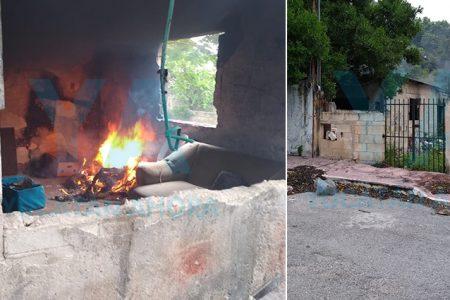 Se incendia un predio abandonado en Cinco Colonias