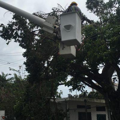 Concluye catastrófica temporada de huracanes 2020 para la CFE