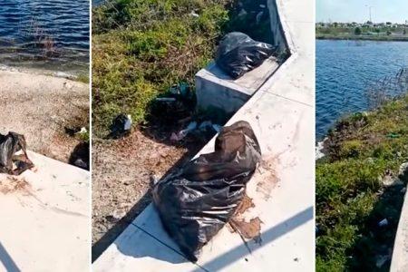 Denuncian que vendedores dejan basura en el nuevo 'malecón' de Pensiones