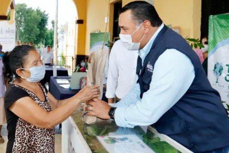Pese al Covid-19, Mérida ha visto crecer este 2020 su infraestructura verde