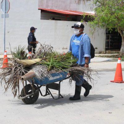 Este lunes 16 de noviembre habrá recolección de basura pese al día inhábil