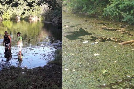 Se inunda parque hundido atrás del penal: piden llevar peces para evitar moscos