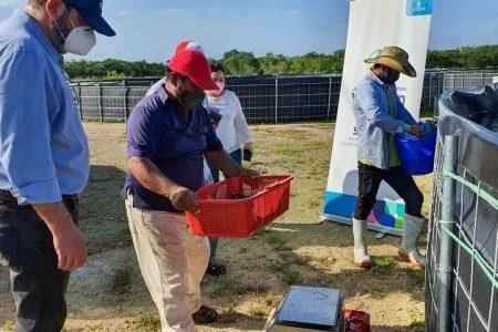 Programa Peso a Peso apoya también a granjas acuícolas