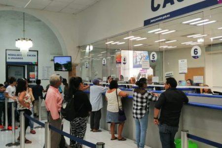Japay e IVEY ofrecerán rebajas en multas y recargos por El Buen Fin