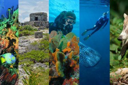 Riqueza biológica, motor del desarrollo de Quintana Roo