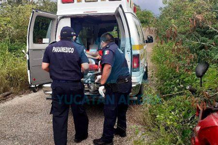Derrapa joven motociclista tras atropellar un animal