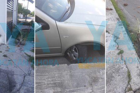 Abuelita pierde el control de su auto y derriba dos palmeras