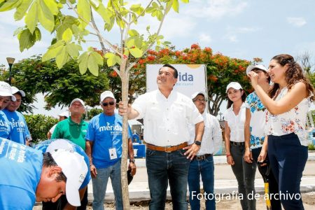 Mérida, ciudad cada vez más sustentable para afrontar el cambio climático