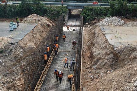 El Tren Maya implementará diversas estrategias para cuidar el medio ambiente