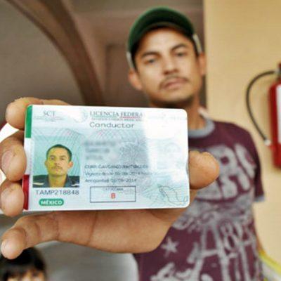 Prorrogan hasta el 30 de junio de 2021 la vigencia de licencias de conducir federales