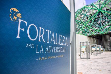 Muestra fotográfica pone de relieve la fortaleza de los yucatecos ante la adversidad