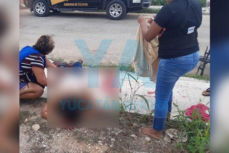 Lo acuchillan de gravedad tras borrachera en Diamante Opichén: tres detenidos