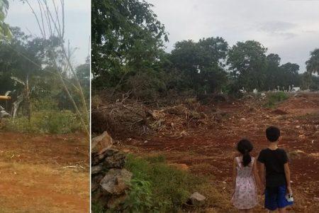 Vulneran la salud de familias en Muna: siguen deforestando para ampliar cementerio