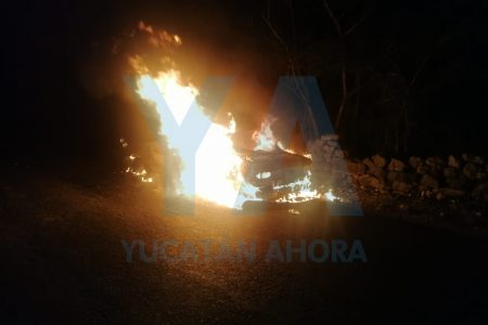 Tsuru arde como año viejo en una carretera