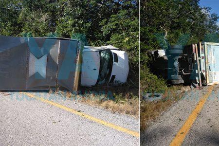 Camión vuelca por una falla mecánica
