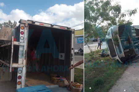Vuelca un camión tras ser chocado por un volquete que huyó