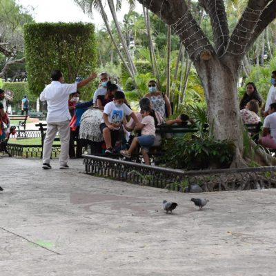 Explican a vendedores de antojitos de Mérida en Domingo por qué no pueden laborar