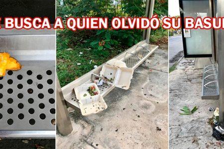 Se buscan: personas que 'olvidan' su basura en paraderos de autobuses