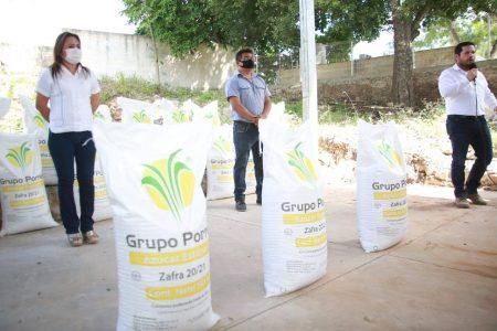 Continúa la entrega de azúcar para recuperar la actividad apícola de Yucatán