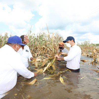 2020 ha sido el año más difícil en la historia contemporánea de Yucatán