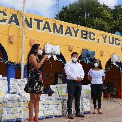Inicia entrega de semillas de frijol a pequeños productores de Yucatán