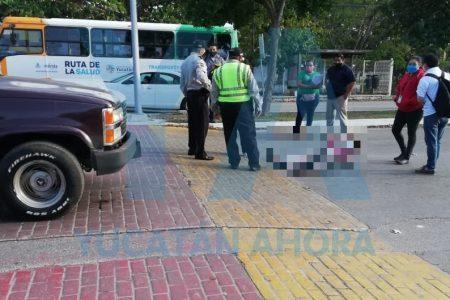 Atropellan a transeúnte en paso peatonal de la avenida Correa Rachó