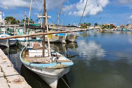 Sector pesquero respalda labor del gobernador Mauricio Vila