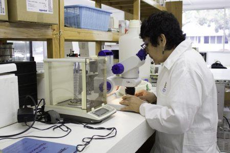 Inventores yucatecos, muy activos en crear soluciones para problemas cotidianos