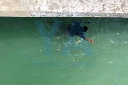Rescatan a bañista en Chuburná Puerto: las olas lo arrastraban mar adentro
