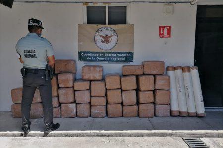 Guardia Nacional asegura 380 kilos de marihuana oculta entre bultos de cal, en Umán
